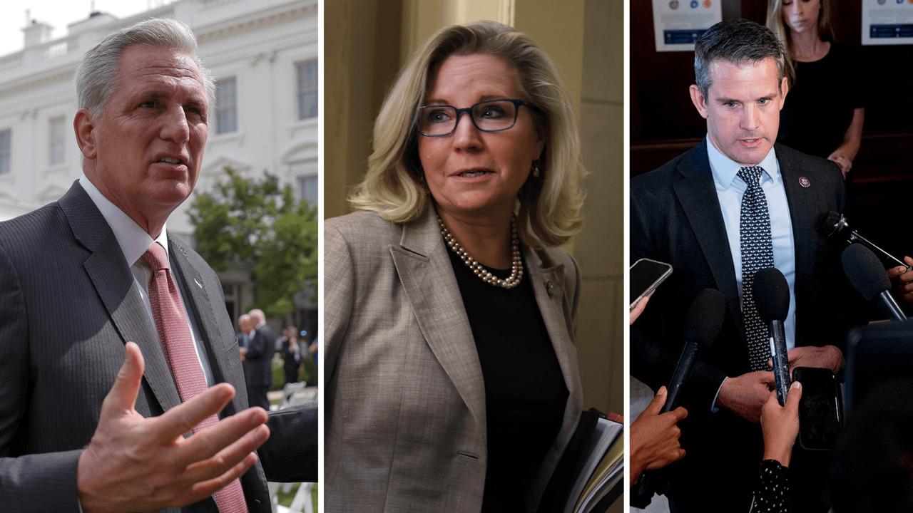 McCarthy calls Cheney and Kinzinger 'Pelosi Republicans'