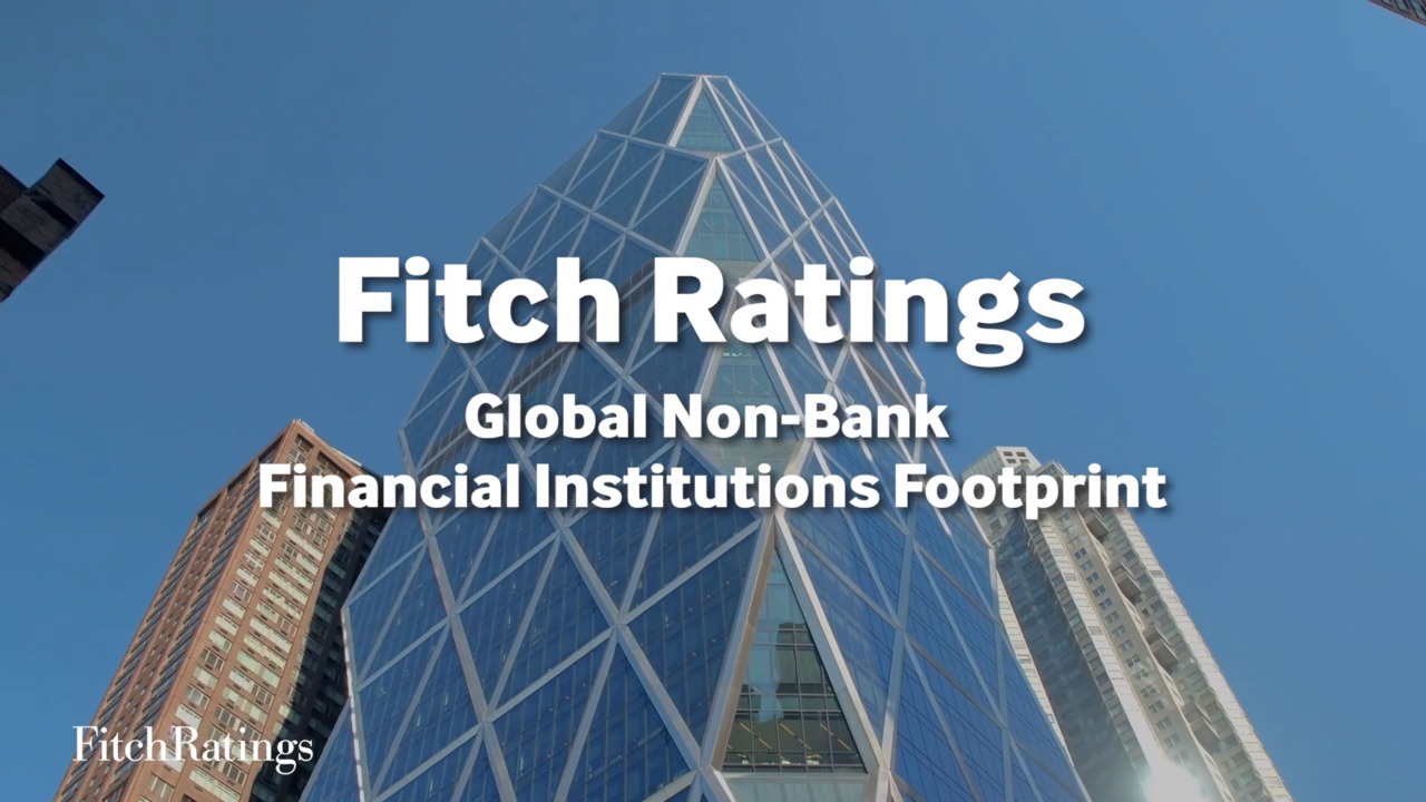 Global Non-Bank Financial Institutions Footprint