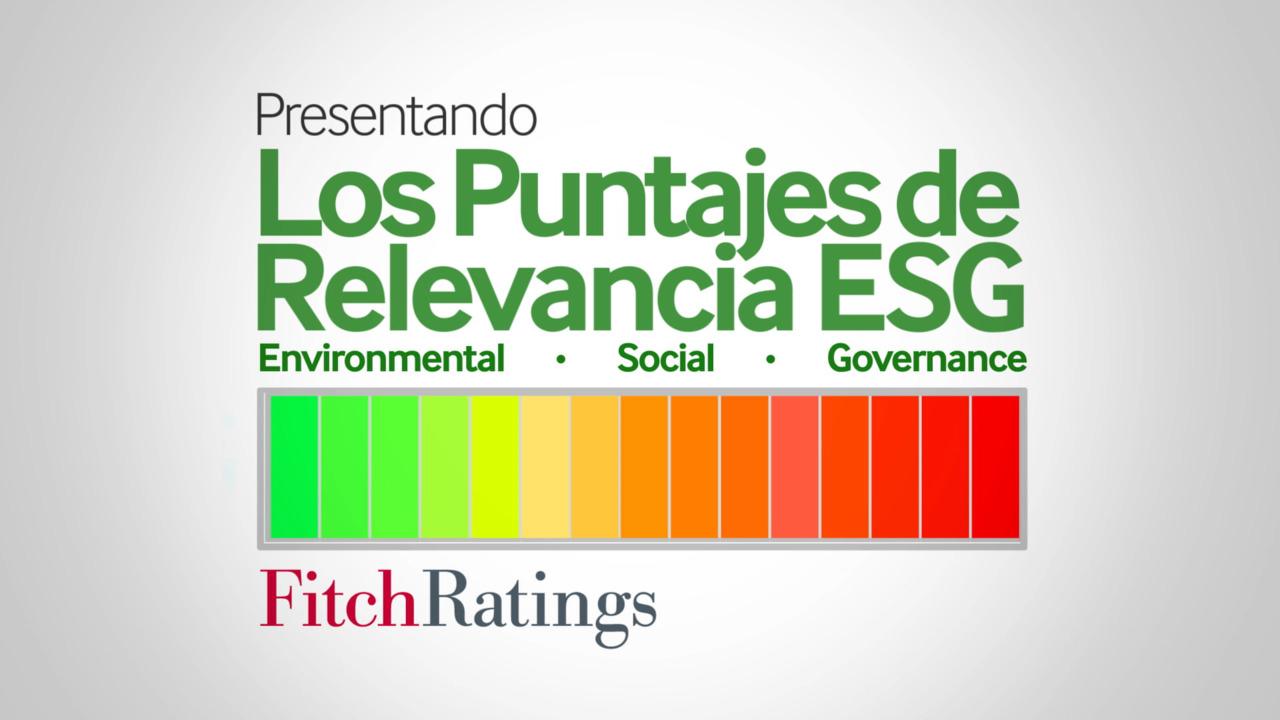 Presentando los Puntajes de Relevancia ESG