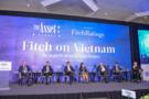 Fitch on Vietnam Forum