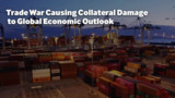 Trade War Causing Collateral Damage to Global Economic Outlook