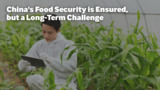 China's Food Security is Ensured, but a Long-Term Challenge