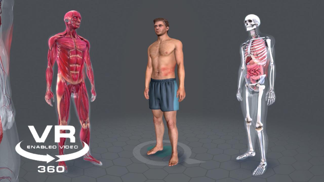 Shingles: Up Close and Personal 360-degree Virtual Reality Video