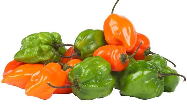 A Spicy Way to Prevent Cancer
