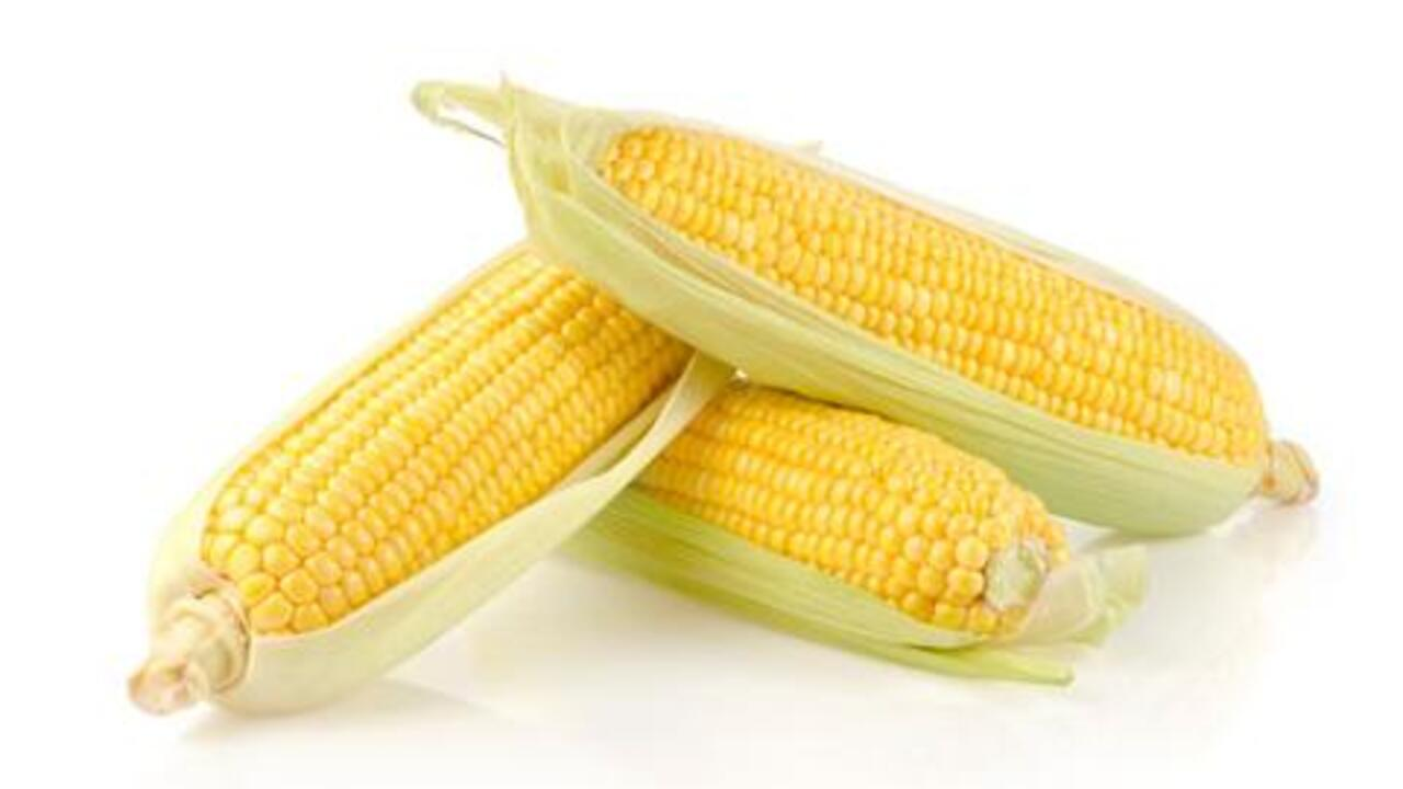 Corn: An Anti-Aging Food