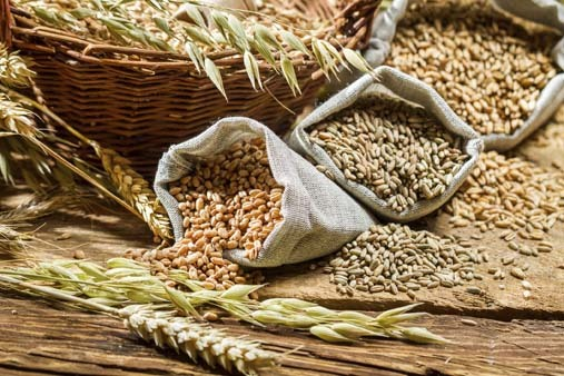4 New Whole Grains to Try