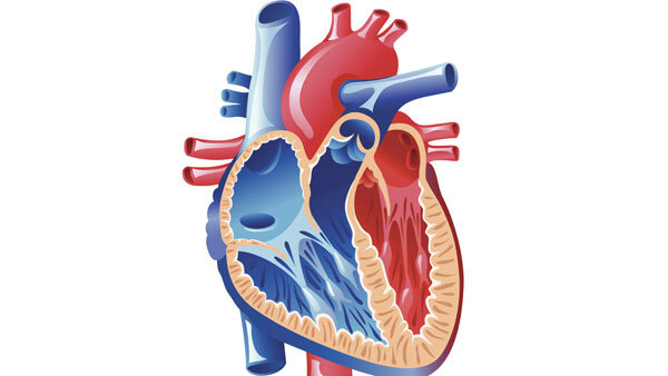 What Are the Most Common Causes Leading to Heart Surgery?