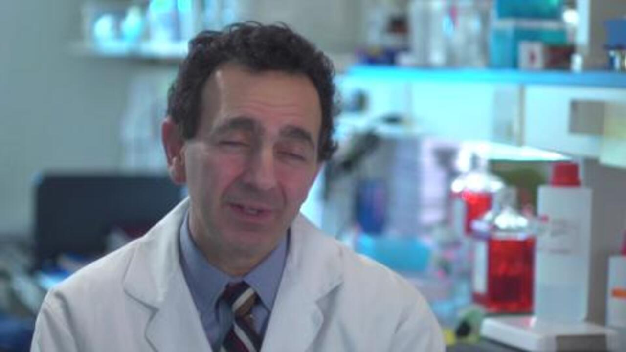 What Is the Promise of Regenerative Medicine?