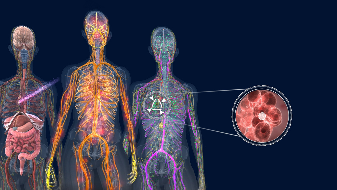 A Virtual Look at Lung Cancer Treatments