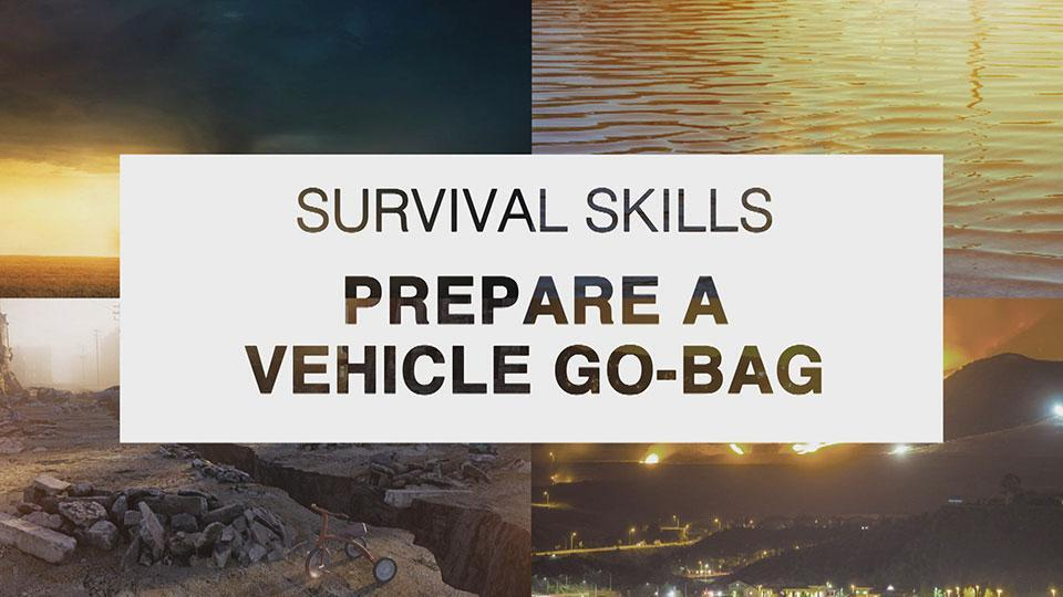 How to Make a Makeshift Bat and Survival Bag