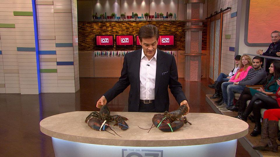 What Lobsters Teach Us About Aging