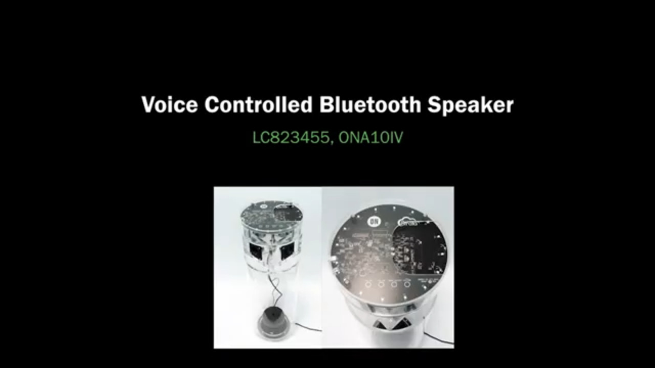 Voice Controlled Bluetooth Speaker