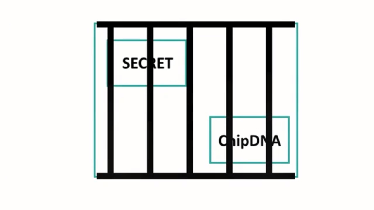Learn how ChipDNA™ physically unclonable function (PUF) technology keeps your secrets safe