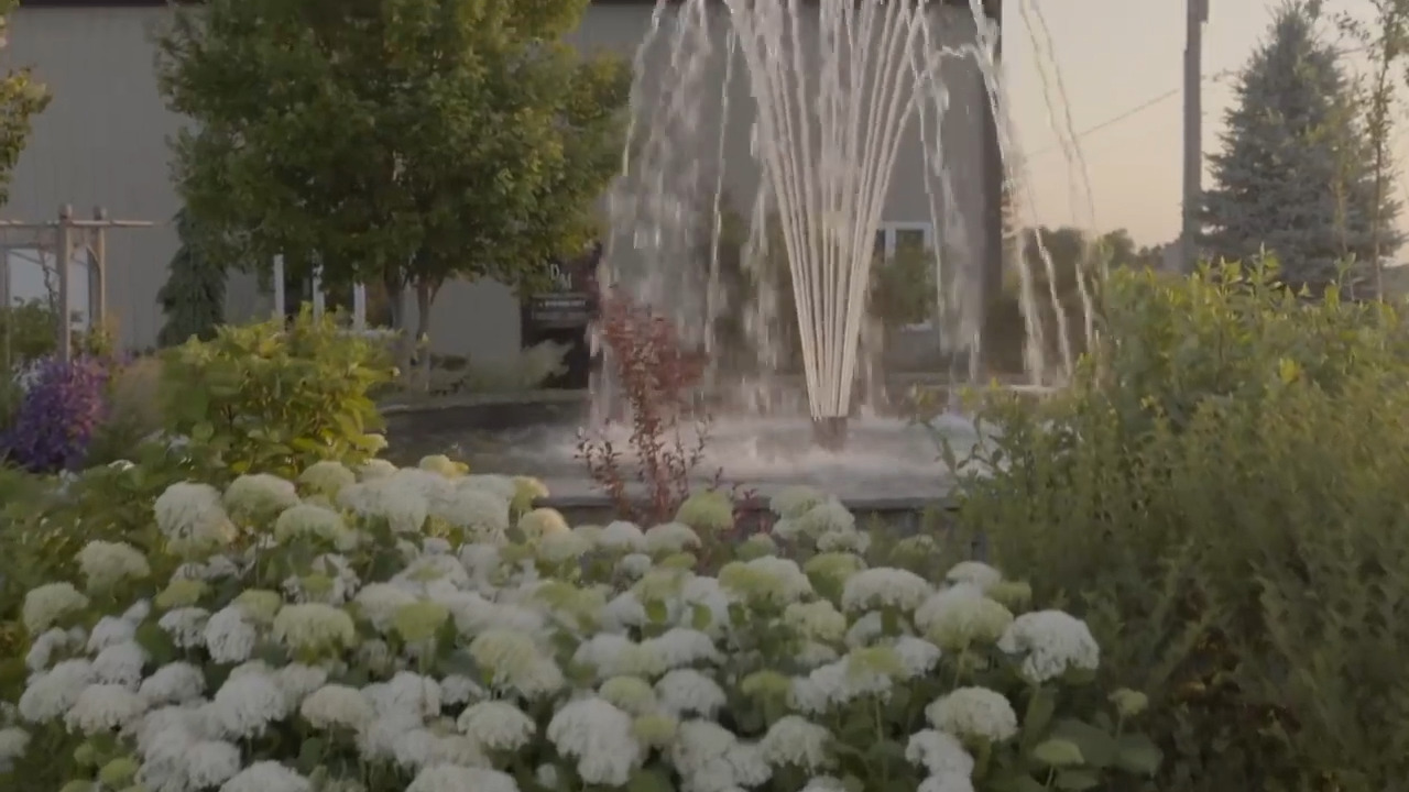 Bulgin Case Study Aqua Control Fountains