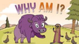 Why Am I? - S01E02 - Why Am I So Chompy?