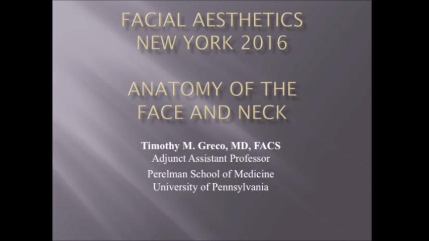 Video Optimal Placement Of Fillers Dependent On Anatomical Layers