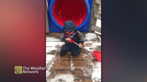 TINIEST LITTLE HELPER CLEARS SNOW FROM PLAYSET