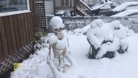 HALLOWEEN DECORATIONS GET OUT-SPOOKED BY OCTOBER SNOWFALL