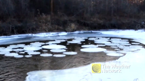 PERFECT ICE DISCS FORMED TOGETHER IN MANITOBA