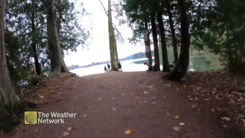 ENJOY AN ENTIRE HIKE AROUND LANGFORD LAKE IN 40 SECONDS