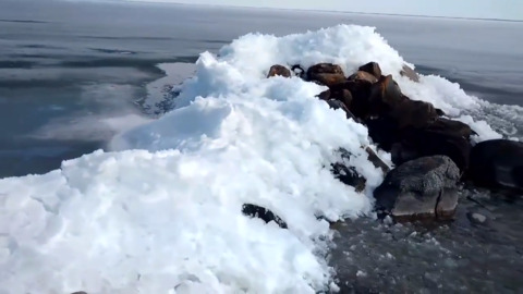 WATCH ICE BEGIN TO PILE UP ON ONTARIO SHORE WITH NO SIGN OF SLOWING DOWN