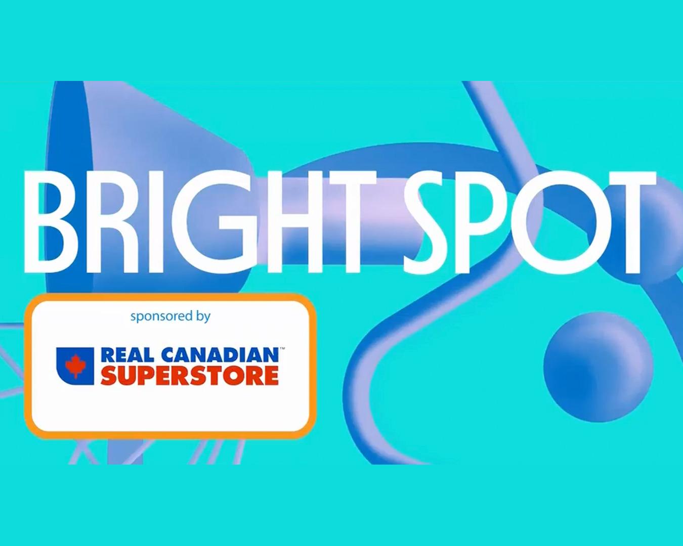 BT BrightSpot: Doggy Daycare!