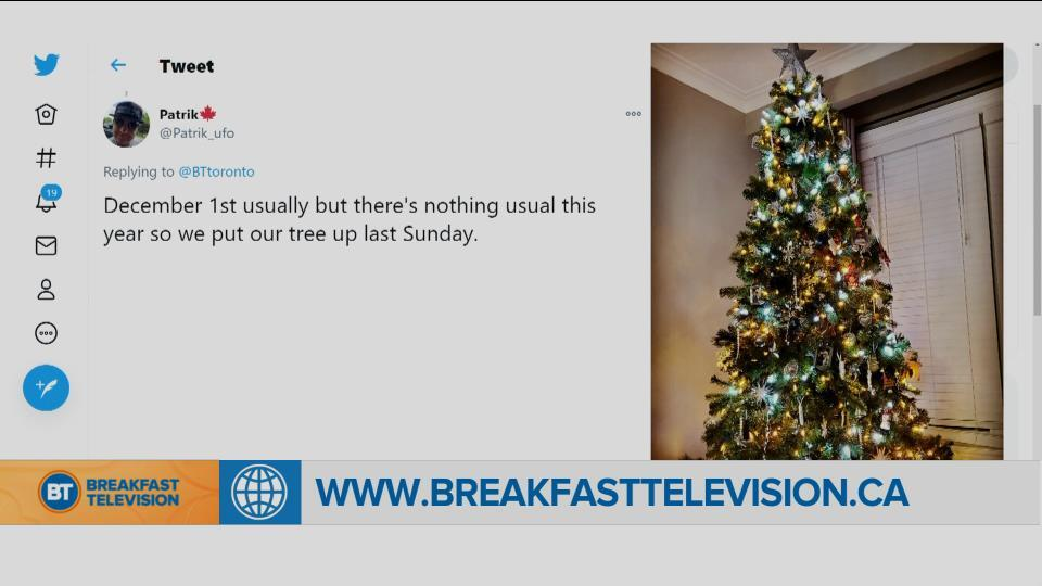 National Sound Off: When is the right time to set up your Christmas tree?