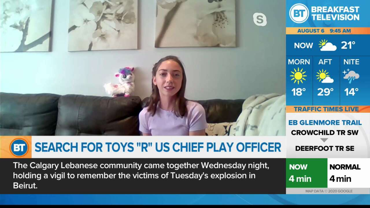 Search for Toys R Us Chief Play Officer