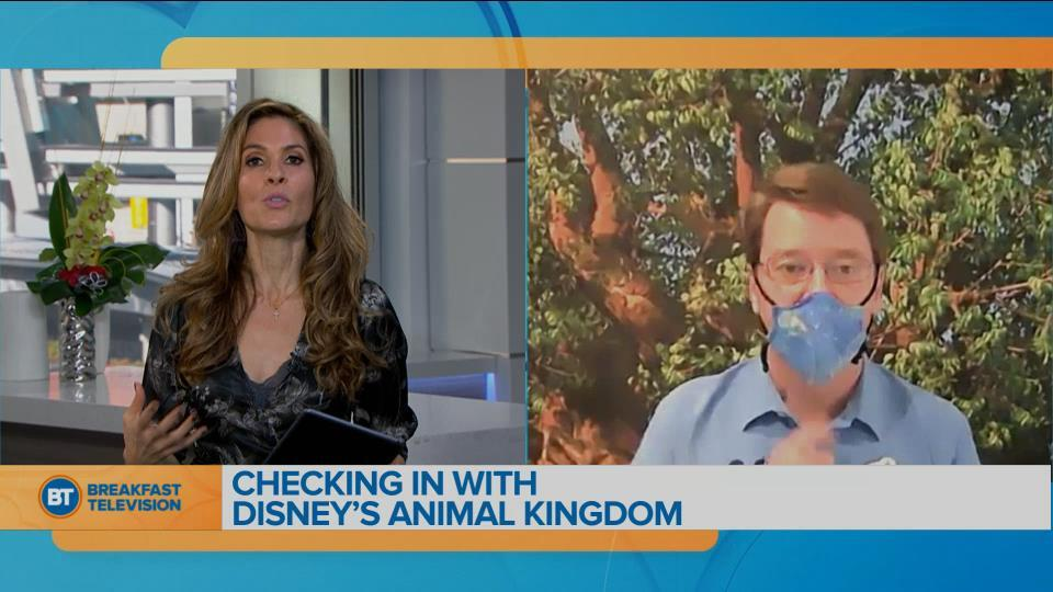 Dr. Mark Penning talks about new series 'Magic of Disney's Animal Kingdom'