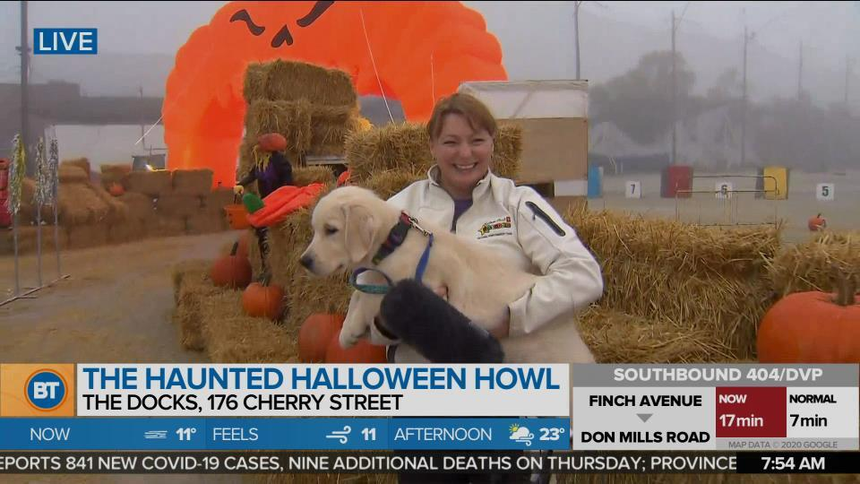 Nicole is LIVE at Haunted Halloween Howl (3 of 4)