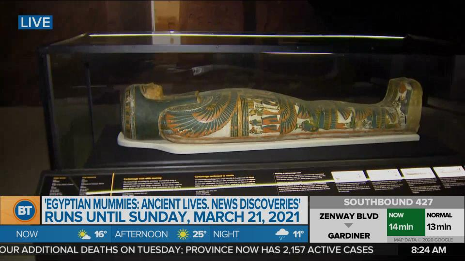 Nicole is LIVE at the Royal Ontario Museum (4 of 5)