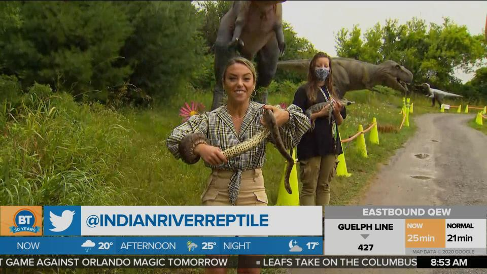 Indian River Reptile and Dinosaur Park Drive-Thru experience!