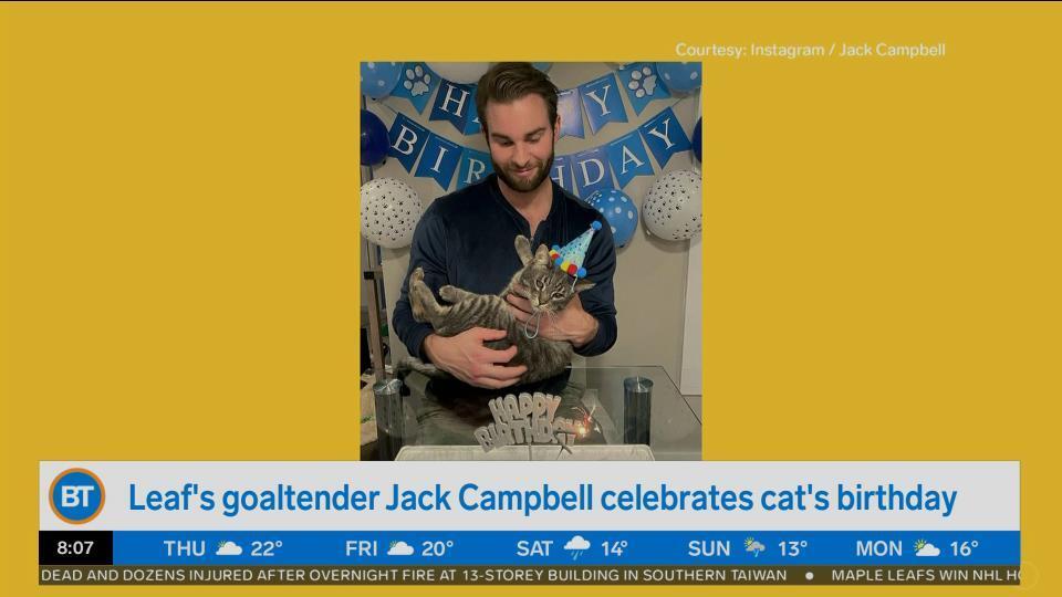 Bright Spot: Happy Birthday to Leaf's goaltender Jack Campbell's cat!