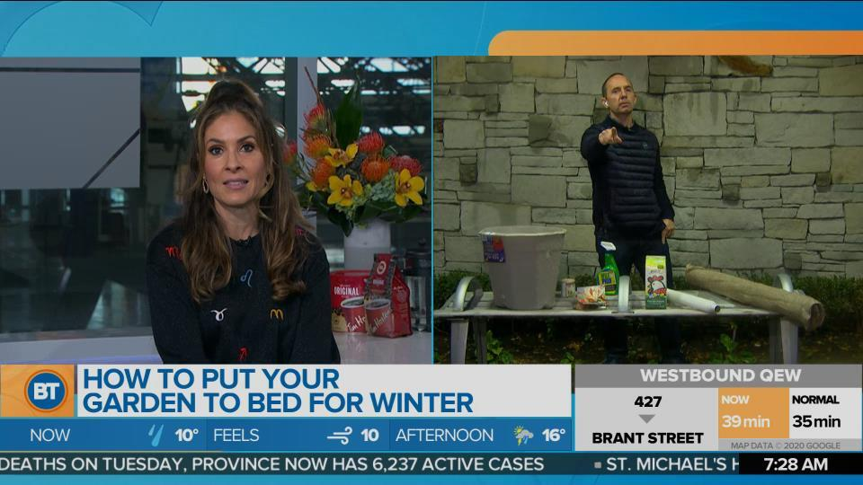 How to put your garden to bed for winter with Frankie Flowers!