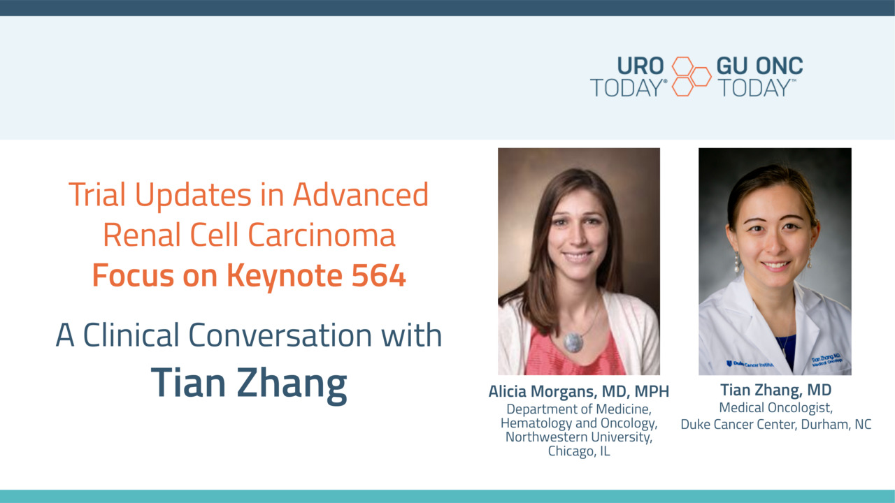 A Review of Adjuvant Studies in Advanced Renal Cell Carcinoma - Tian