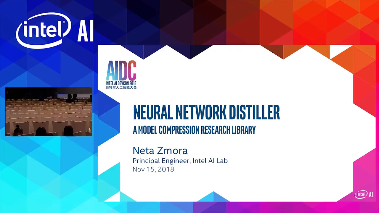 Neural Network Distiller: a PyTorch Environment for Neural Network  Compression