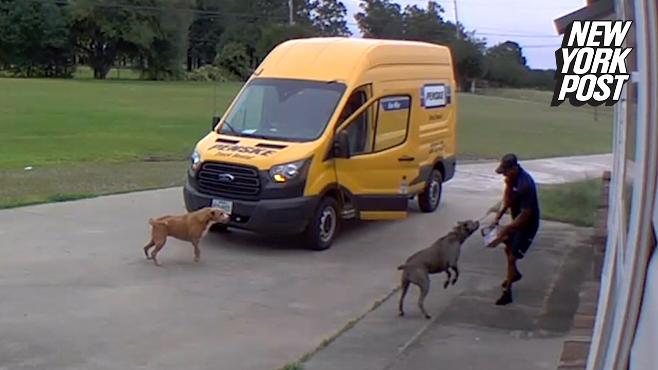 Barking dogs turn FedEx driver into a scaredy cat