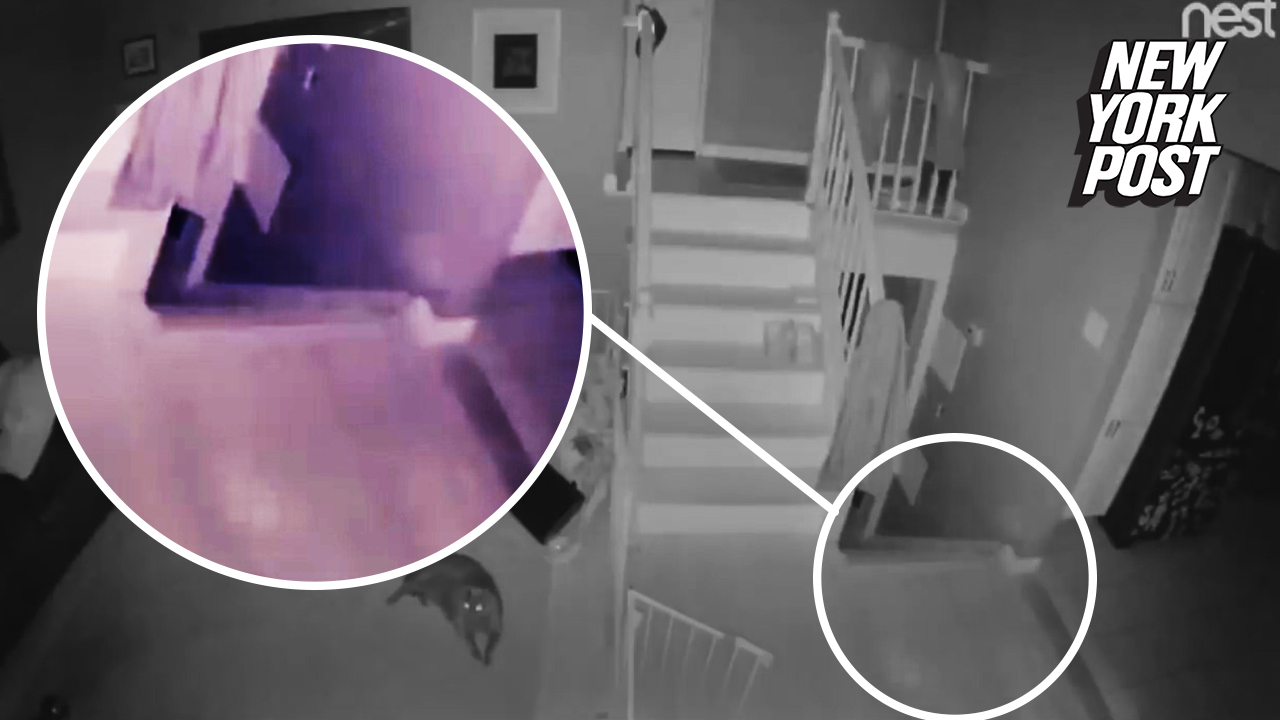 Ghost and its 'pet' caught on camera in shocking footage