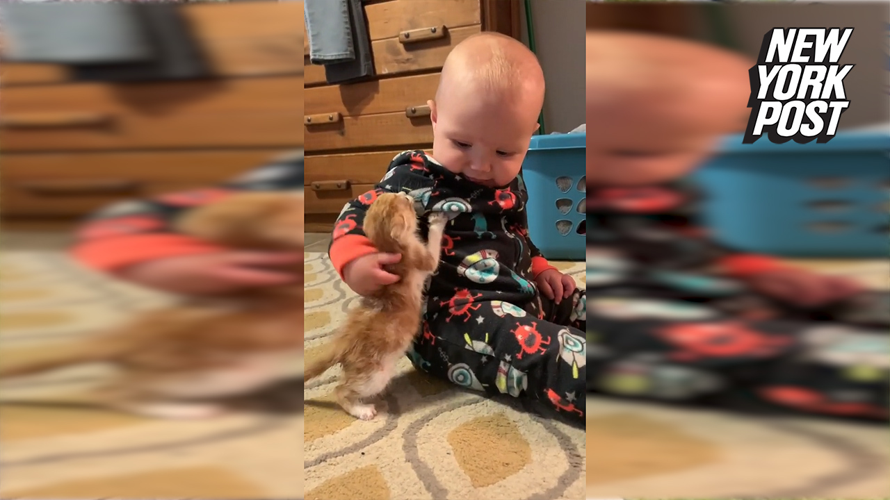 """A baby was taught to use """"gentle hands"""" with a kitten taken in by a family in Mississippi. See how 9-month-old Sojourner lights up while petting the cat in this heartwarming moment. For more feel-good animal rescue videos, click here."""