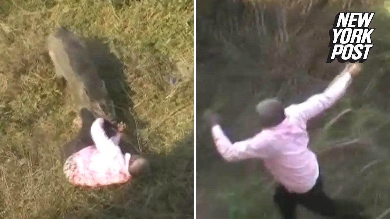 Man fights off wild boar in front of horrified crowd