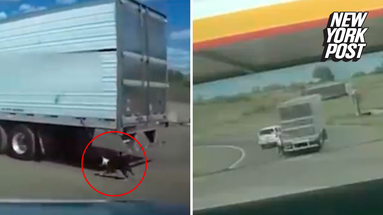 Good Samaritan helps save dog dragged by semi-truck