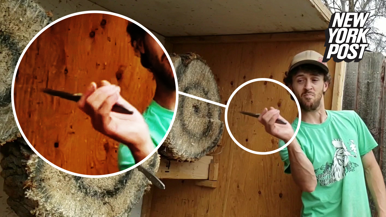 Dude's knife-catching skills are a 'cut' above the rest