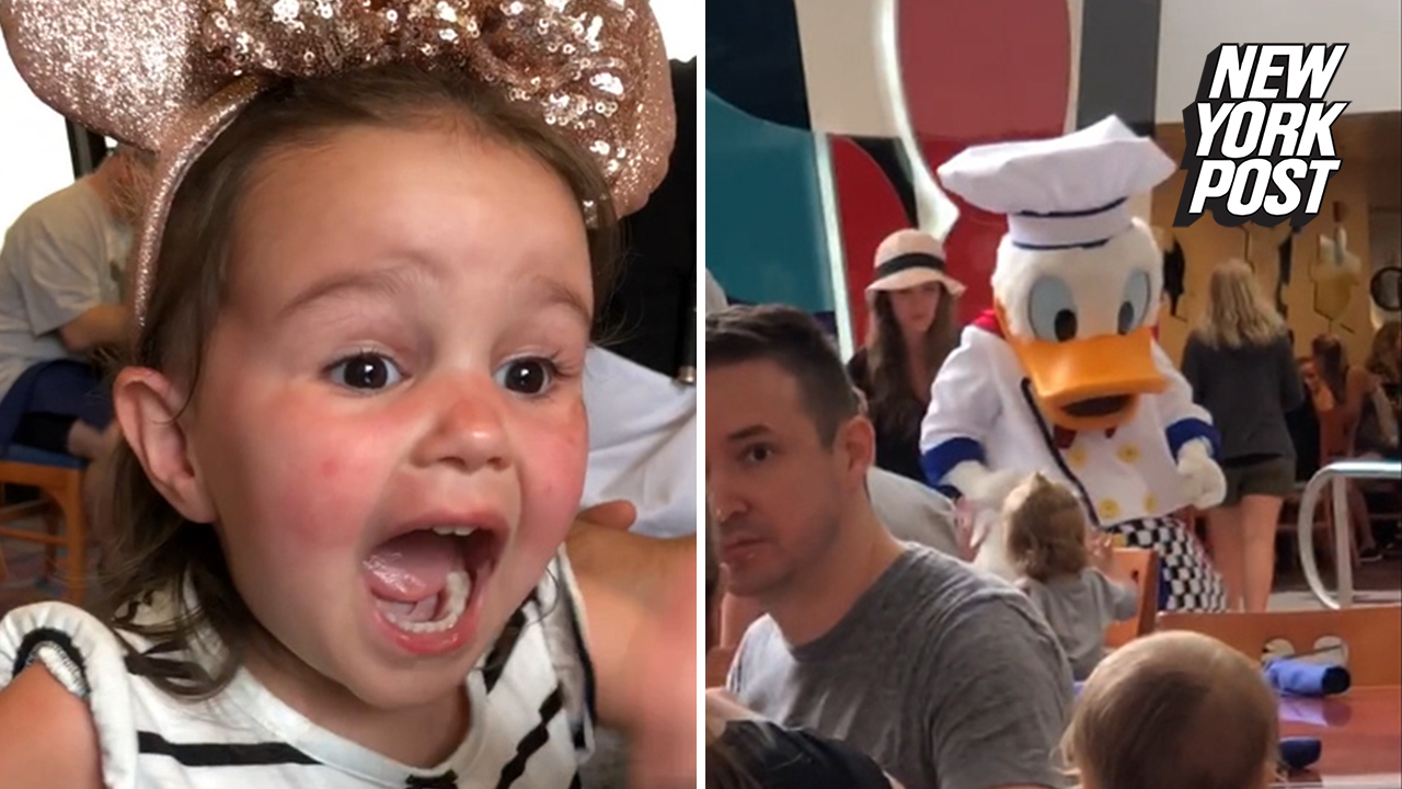 Toddler's reaction to seeing Donald Duck is magical