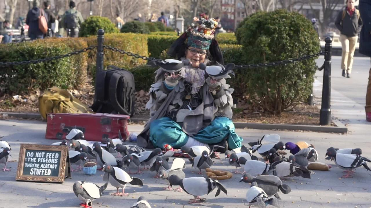 A New York gem  This woman is  mother  to hundreds of pigeons (Video ... b2340422f