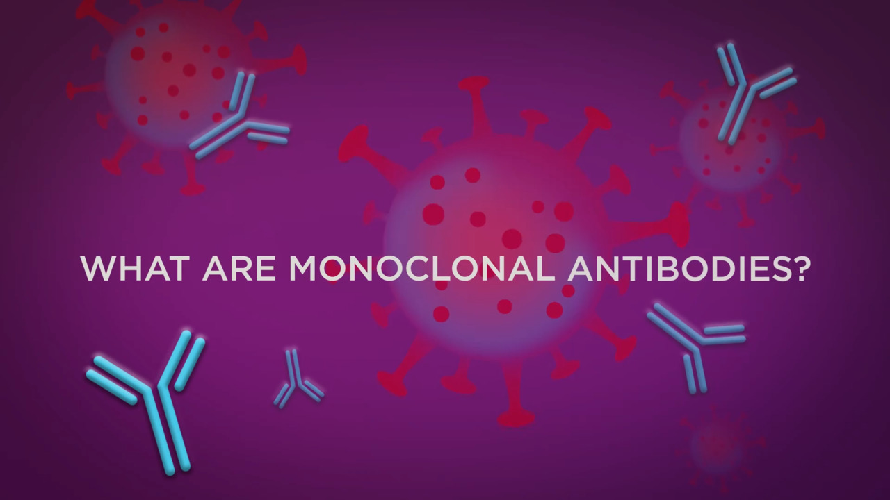 What Are Monoclonal Antibodies? How Are They Used to Treat COVID-19?