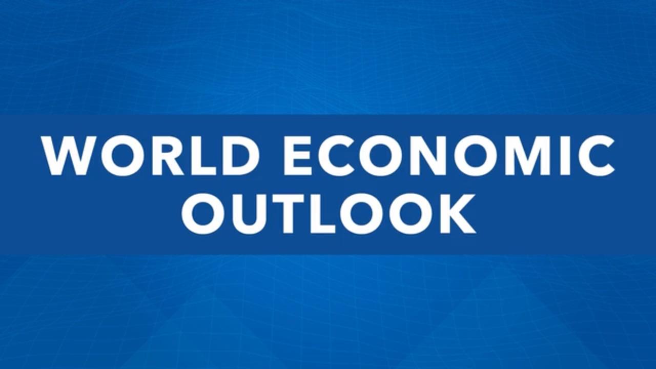 المؤتمر الصحفي لآفاق الاقتصاد العالمي