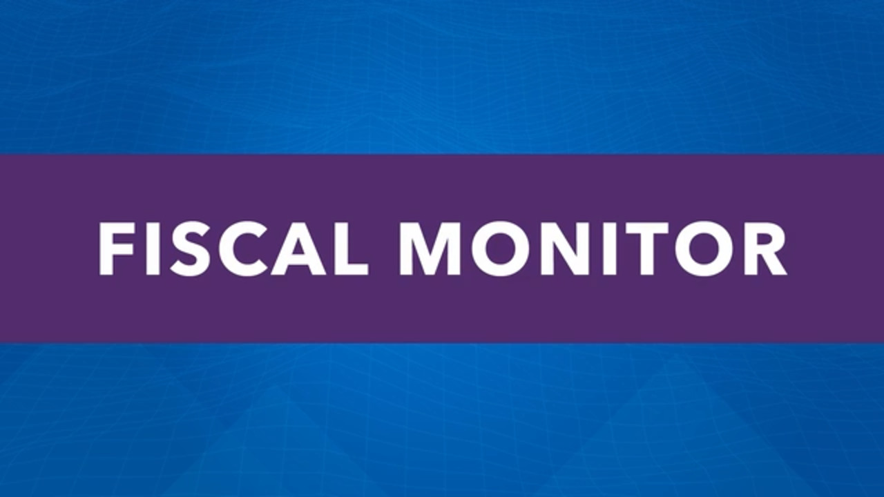 French -  Press Briefing: Fiscal Monitor