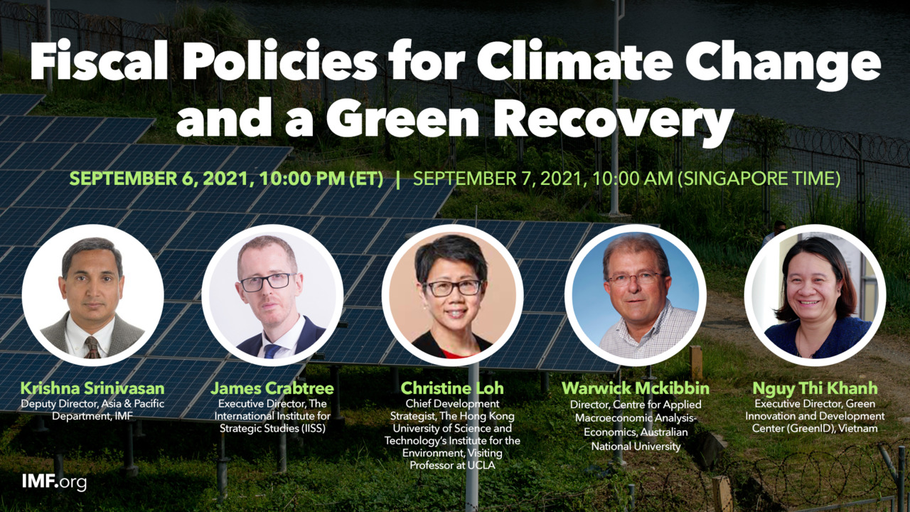 Fiscal Policies for Climate Change and a Green Recovery