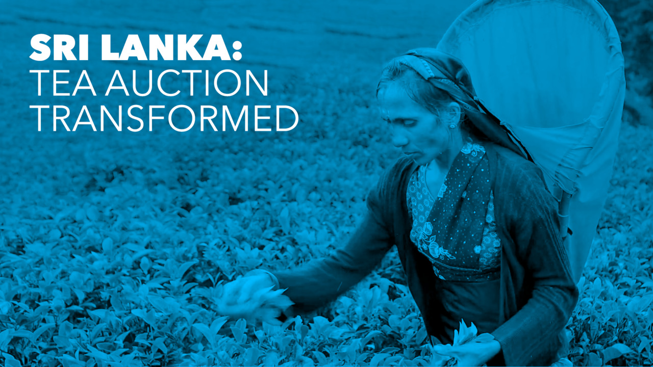 Sri Lanka: Tea Auction Transformed