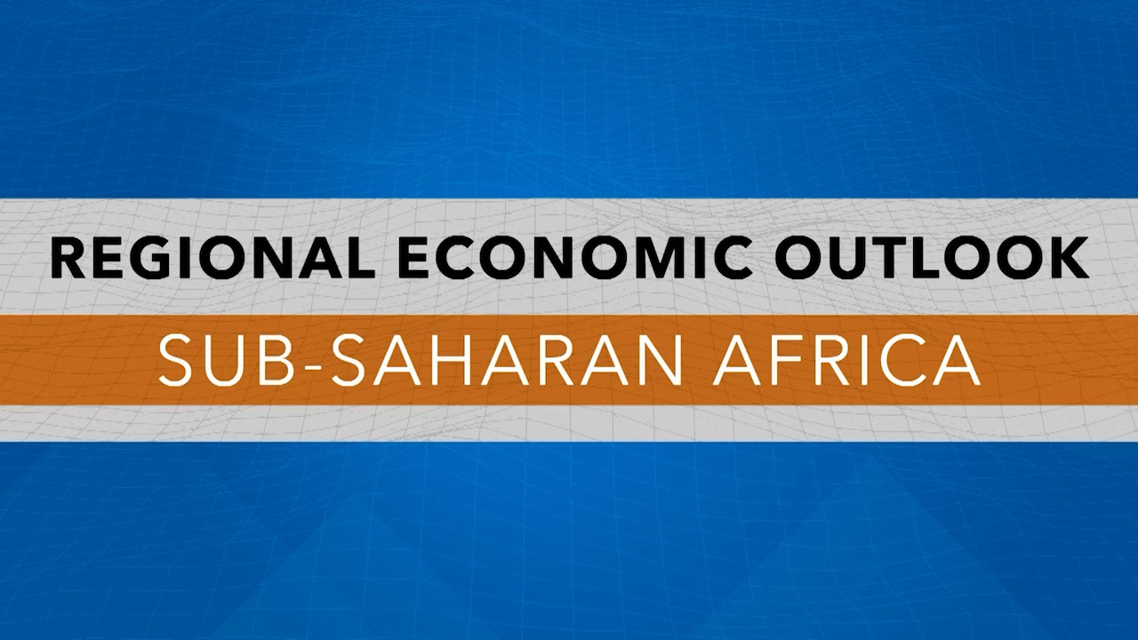 IMF Press Briefing: African Department